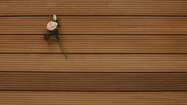 Bangkirai Holz Dielen für die Terrasse, 10,50 €/lfm, Premium (KD), grob genutet, 25 x 145 x 4880 mm, Terrassendielen Bretter