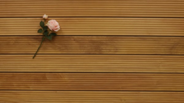 Garapa Holz Dielen für die Terrasse, 11,90 €/lfm, Premium (KD) grob genutet, 25 x 145 bis 6100 mm, Terrassendielen Bretter
