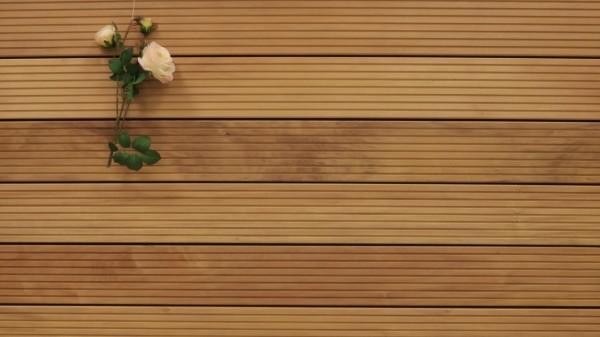 Garapa Holz Dielen für die Terrasse, 16,90 €/lfm, Premium (KD) grob genutet, 45 x 145 bis 6100 mm, Terrassendielen Bretter