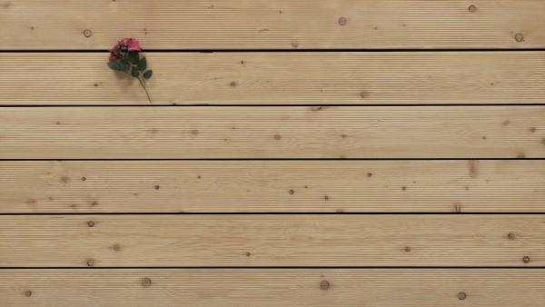 Sibirische Lärche Holz Dielen für die Terrasse, B Sortierung, 5,90 €/lfm, fein gerillt, 27 x 143 bis 6000 mm, Terrassendielen Bretter